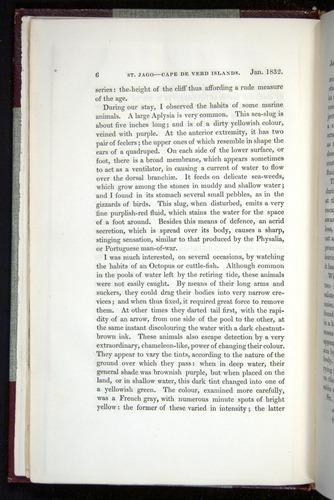 Image of Darwin-F11-1839-00006