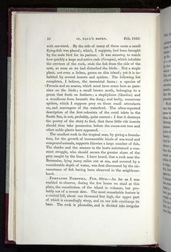 Image of Darwin-F11-1839-00010