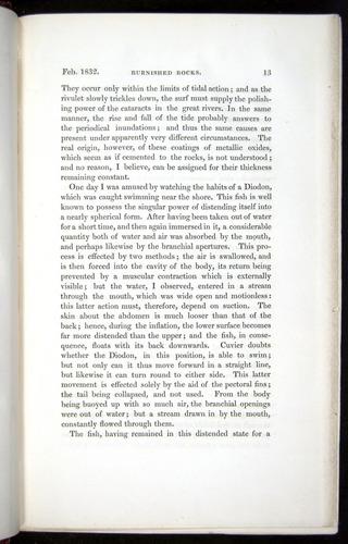 Image of Darwin-F11-1839-00013