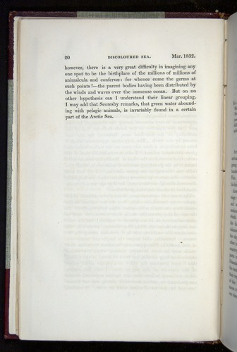 Image of Darwin-F11-1839-00020