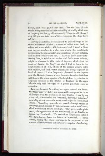 Image of Darwin-F11-1839-00024