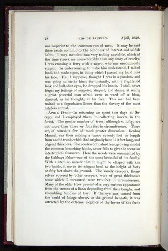 Image of Darwin-F11-1839-00028