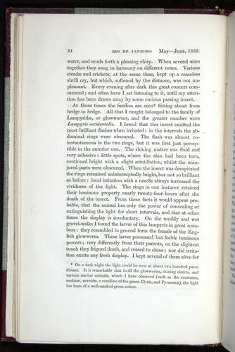 Image of Darwin-F11-1839-00034