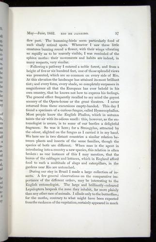 Image of Darwin-F11-1839-00037