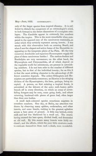 Image of Darwin-F11-1839-00039
