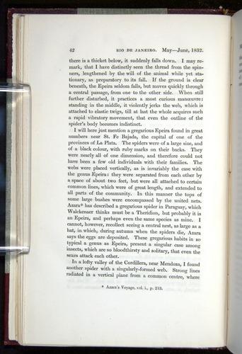 Image of Darwin-F11-1839-00042