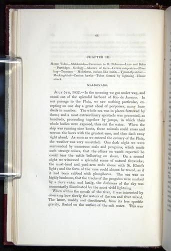 Image of Darwin-F11-1839-00044