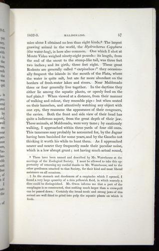 Image of Darwin-F11-1839-00057
