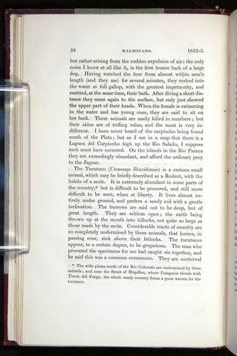 Image of Darwin-F11-1839-00058