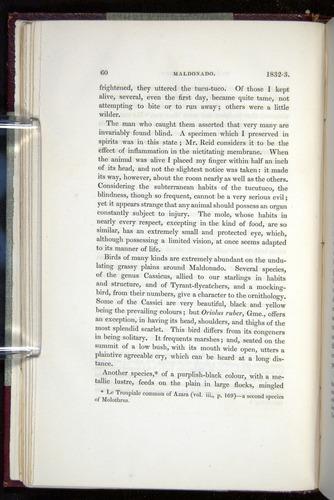 Image of Darwin-F11-1839-00060