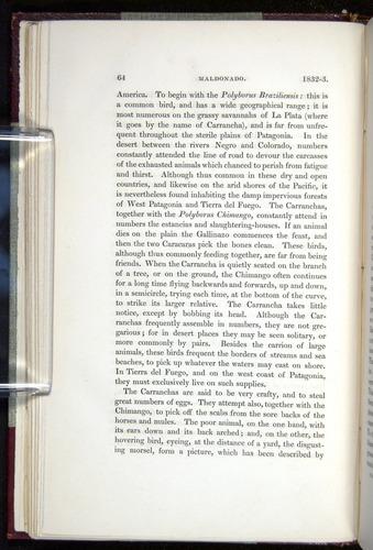 Image of Darwin-F11-1839-00064