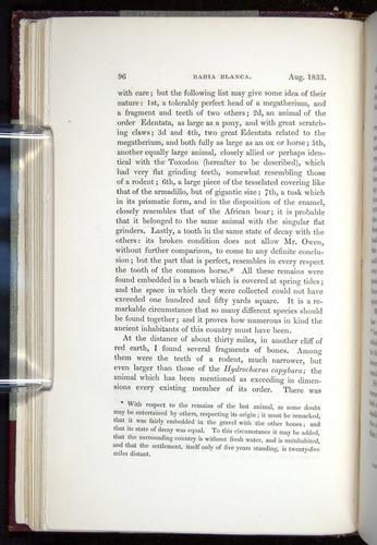 Image of Darwin-F11-1839-00096