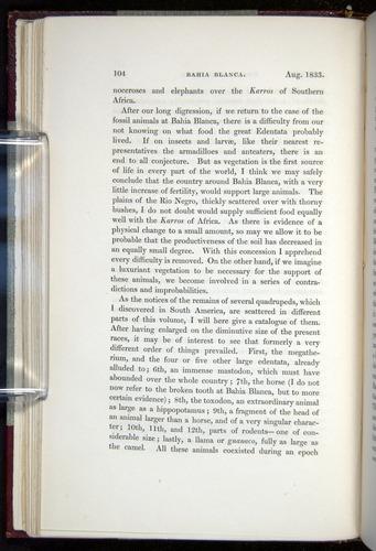Image of Darwin-F11-1839-00104