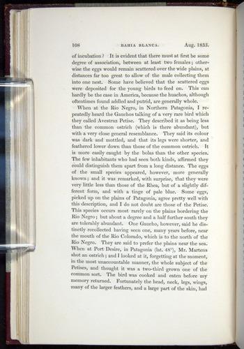 Image of Darwin-F11-1839-00108