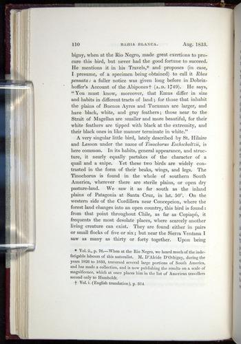 Image of Darwin-F11-1839-00110