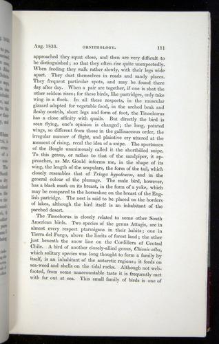 Image of Darwin-F11-1839-00111