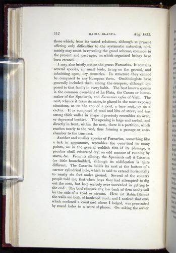Image of Darwin-F11-1839-00112