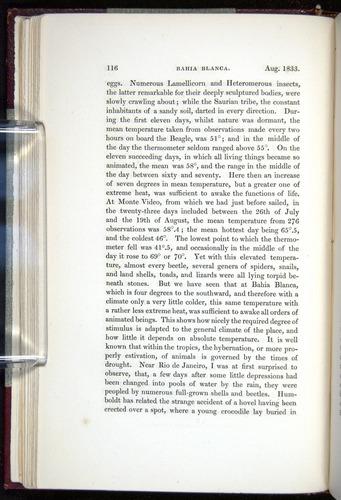 Image of Darwin-F11-1839-00116