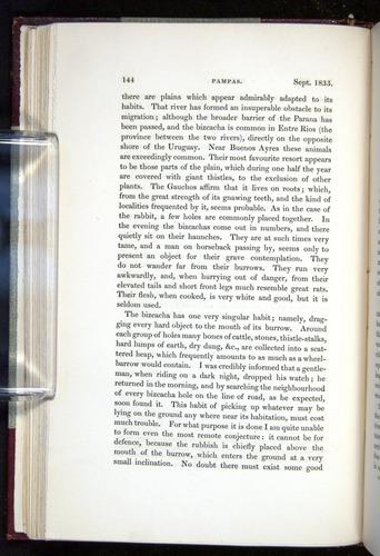 Image of Darwin-F11-1839-00144