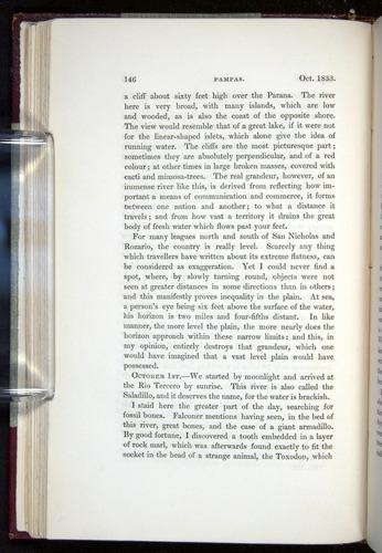 Image of Darwin-F11-1839-00146