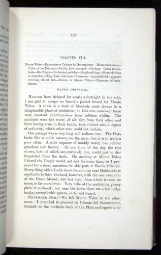Image of Darwin-F11-1839-00167