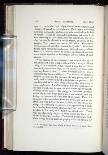 Image of Darwin-F11-1839-00174