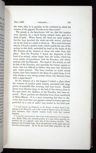 Image of Darwin-F11-1839-00181