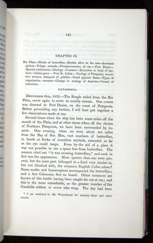 Image of Darwin-F11-1839-00185