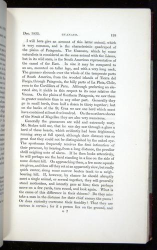 Image of Darwin-F11-1839-00195
