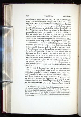 Image of Darwin-F11-1839-00206