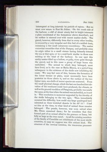 Image of Darwin-F11-1839-00208