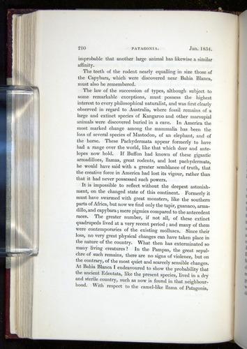 Image of Darwin-F11-1839-00210