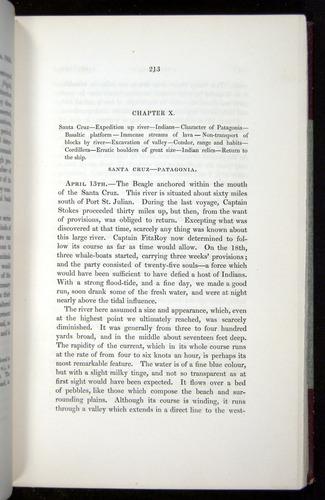Image of Darwin-F11-1839-00213