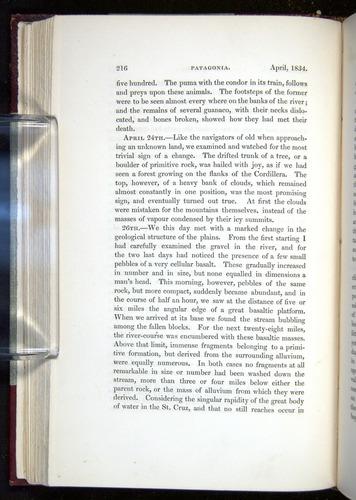 Image of Darwin-F11-1839-00216