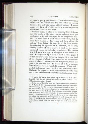 Image of Darwin-F11-1839-00222