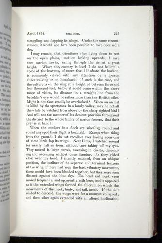 Image of Darwin-F11-1839-00223
