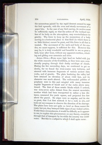 Image of Darwin-F11-1839-00224