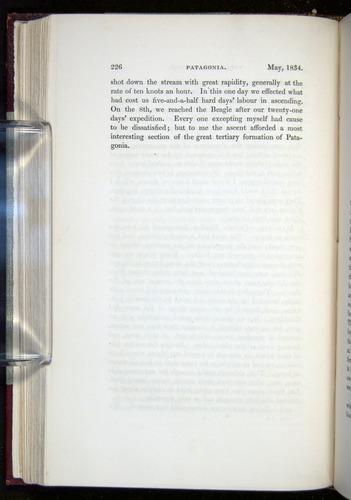 Image of Darwin-F11-1839-00226