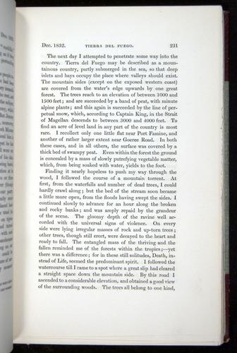 Image of Darwin-F11-1839-00231