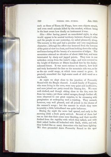Image of Darwin-F11-1839-00240