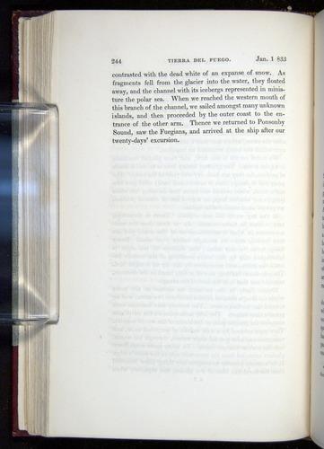 Image of Darwin-F11-1839-00244