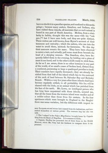 Image of Darwin-F11-1839-00250