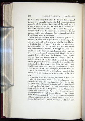 Image of Darwin-F11-1839-00260