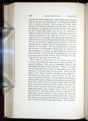 Image of Darwin-F11-1839-00286