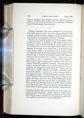 Image of Darwin-F11-1839-00298