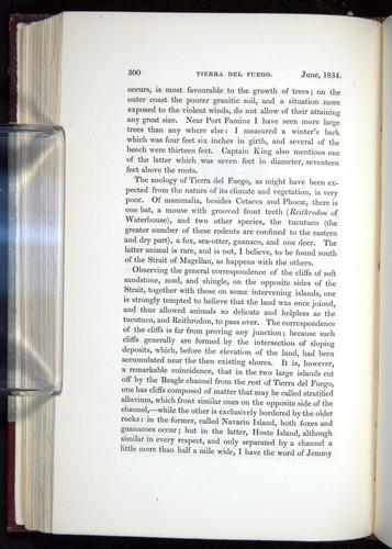 Image of Darwin-F11-1839-00300