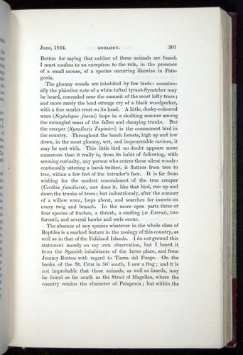 Image of Darwin-F11-1839-00301