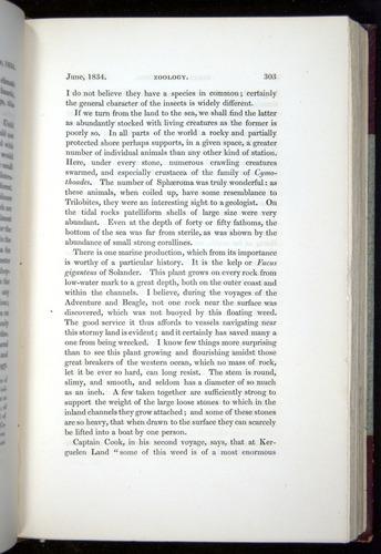 Image of Darwin-F11-1839-00303
