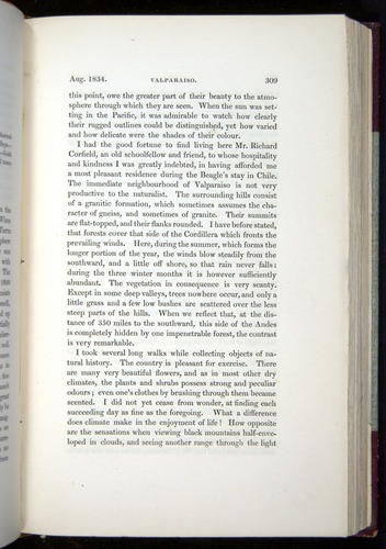 Image of Darwin-F11-1839-00309