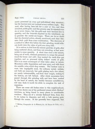 Image of Darwin-F11-1839-00325